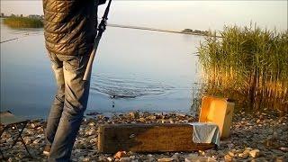 Рыбалка в Казани (поклевка на фидер). Streetfishing