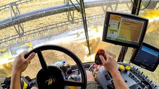 Búza aratás 2018 - CAB VIEW - New Holland CR9090 | GOPRO