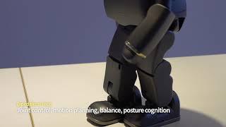 [LIKU robot] Bipedalism Tech