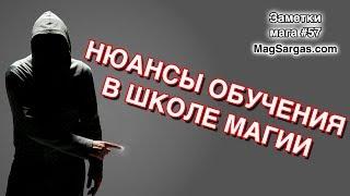 Нюансы Обучения в Школе Магии - Я Не Идеален - Маг Sargas