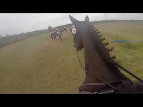 Whidbey Island Horse Trials 2015, GoPro Footage Novice  Cross Country