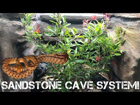 diy-~-how-to-make-a-sandstone-reptile-background-|-brown-tree-snake---boiga-irregularis