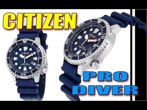 Citizen Promaster Diver watch- Nutnfancy