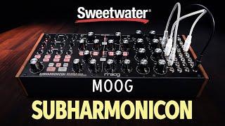 Moog Subharmonicon Semi-Modular Polyrhythmic Analog Synthesizer Demo