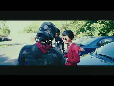 Dnash Tha Rapper - Different Breed