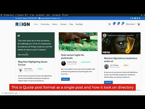 WordPress Quote Post Format Support Reign BuddyPress Theme