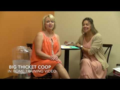 Big Thicket Coop - In Home Training