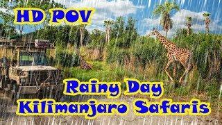 Kilimanjaro Safaris POV Full Ride In Rain Disney Animal Kingdom