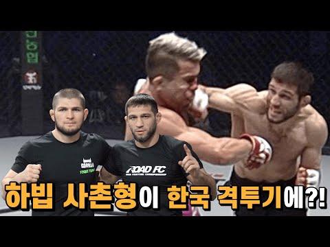 하빕 사촌형이 한국 격투기에 나타나 상대 두드려 패고 다닌다!