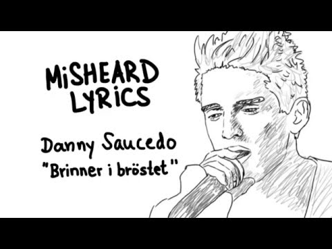 Misheard Lyrics - Danny Saucedo