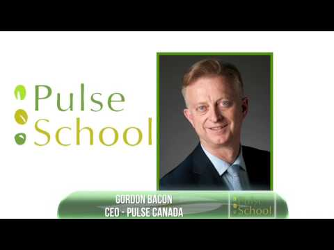 Pulse School - Exports to India at Risk