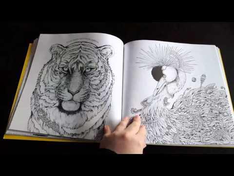 imagimorphia-by-kerby-rosanes-(flip-through)