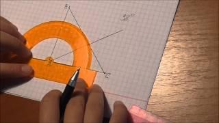 видео Стрелки с разным разрезом глаз