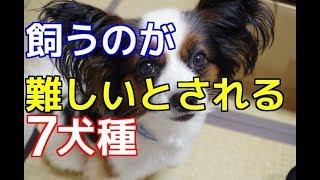チャンネル登録はこちらからも可能です☆→http://ur0.pw/Gf0q 今回は、「...