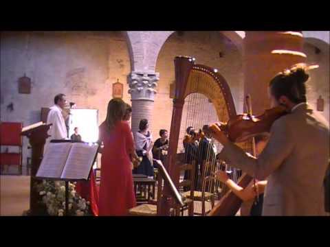 Marcia nuziale di Wagner, arpa e violino - ingresso sposa - Musica Matrimonio