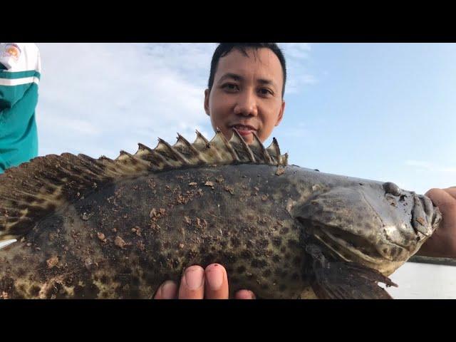 CÂU CÁ Ở NAM ĐỊNH - Phần 2: Câu cá Mú bằng mồi giả vui hết nấc, cá biển kéo cực đã tay