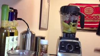 Vitamix 750 Fruit Sorbet