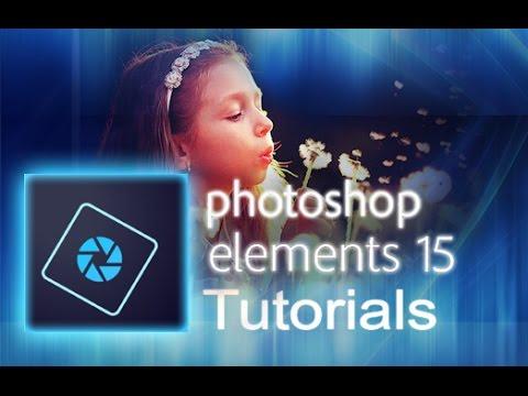 Oshop Elements
