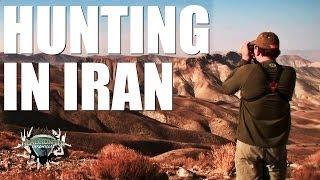 Headhunter Chronicles - Hunting sheep in Iran