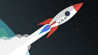 The XRP Rocket is Set to Launch - But When's the Launch Date?