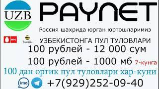 Узбекистан paynet uz UMS beeline ucell UzMobile