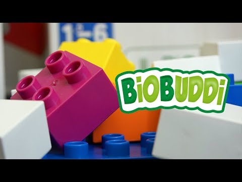 BiOBUDDi Block Sets from Snap Toys Are Eco Friendly! | A Toy Insider Play by Play