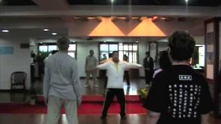 Chinese Martial Arts (Martial Art)