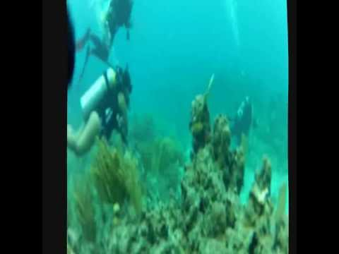 Diver Supply of Puerto Rico