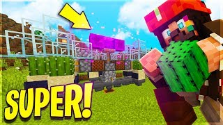 SUPER FARM DI CACTUS e BONE MEAL! - Minecraft ITA Server Anima