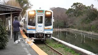 天竜浜名湖鉄道 - 浜名湖佐久米 列車とユリカモメ