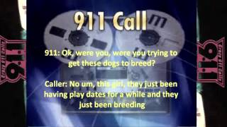 my dogs penis is stuck crazy911calls