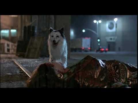 Alien Dog In THE HIDDEN (1987)
