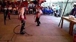 tepeyanco carnaval