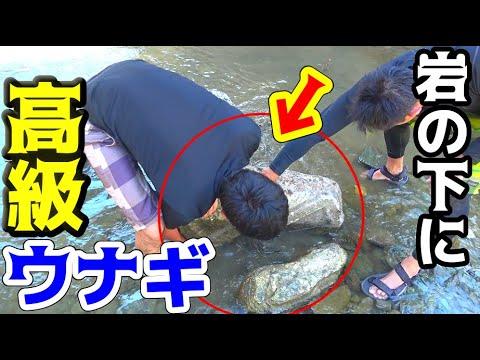 #1 岩の隙間に手を入れて天然ウナギを捕まえる!!