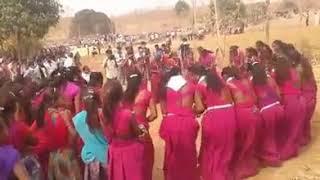 मीणा समाज के होली में डांस