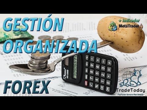 ➡ FOREX CALCULATOR + EXCEL REGISTRATION | TRADETODAY