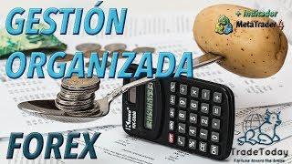 ➡ CALCULADORA FOREX + REGISTRO EXCEL | @Tradetoday__