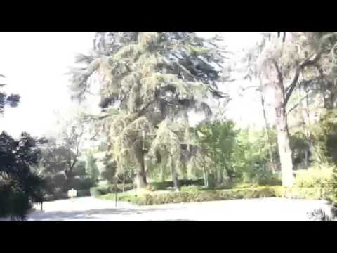 Greystone Mansion Beverly Hills, CA Tour Video 2