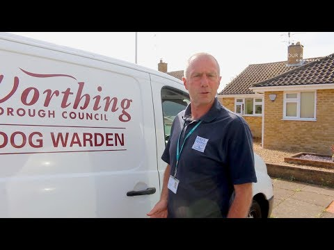 A Day In The Life Of A Council Dog Warden