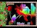 tamil cut songs ringtones