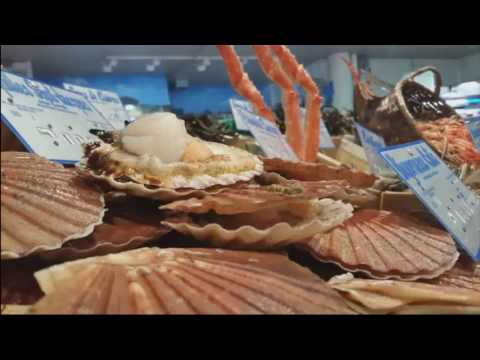 Animation bateau poissonerie