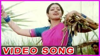 Ee Cheera Kattukonu - Jayam Manade Telugu Video Songs - Krishna , Sridevi