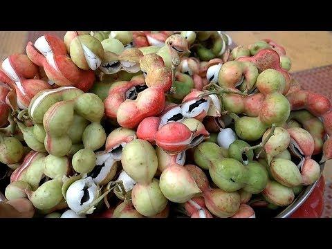 ఈ ఒక్క కాయతో ఇలా చేస్తే..!! II Pithecellobium dulce(manila tamarind) health benifits in telugu
