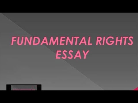 Short Notes On Fundamental Rights Fundamental Rights Essay  High  Short Notes On Fundamental Rights Fundamental Rights Essay  High School Essay Good Health also Marriage Essay Papers  Essay About Healthy Diet