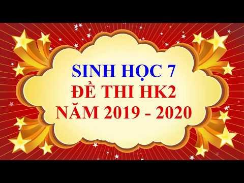 Sinh học lớp 7 - Đề thi HK2 năm học 2019 - 2020