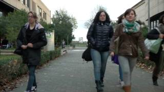 GenZapp Day 9: Youth-Unemployment in Italy