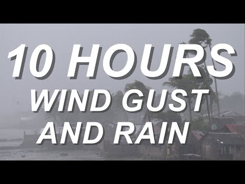 Wind Gust and Rain - Relaxing Nature Sounds 10 Hours