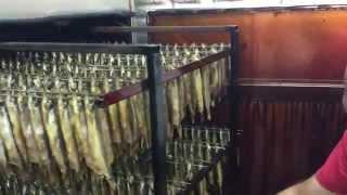 Копчение мойвы в коптильне Ижица-1200М3