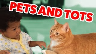 The Funniest Pets Meet The Cutest Kids & Babies of 2016 Weekly Compilation | Funny Pet Videos thumbnail