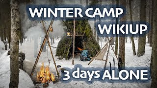 3 Days ALONE in WINTER Forest - WIKIUP Shelter - BUSHCRAFT Trip & Skills - Camping in SNOWFALL ASMR